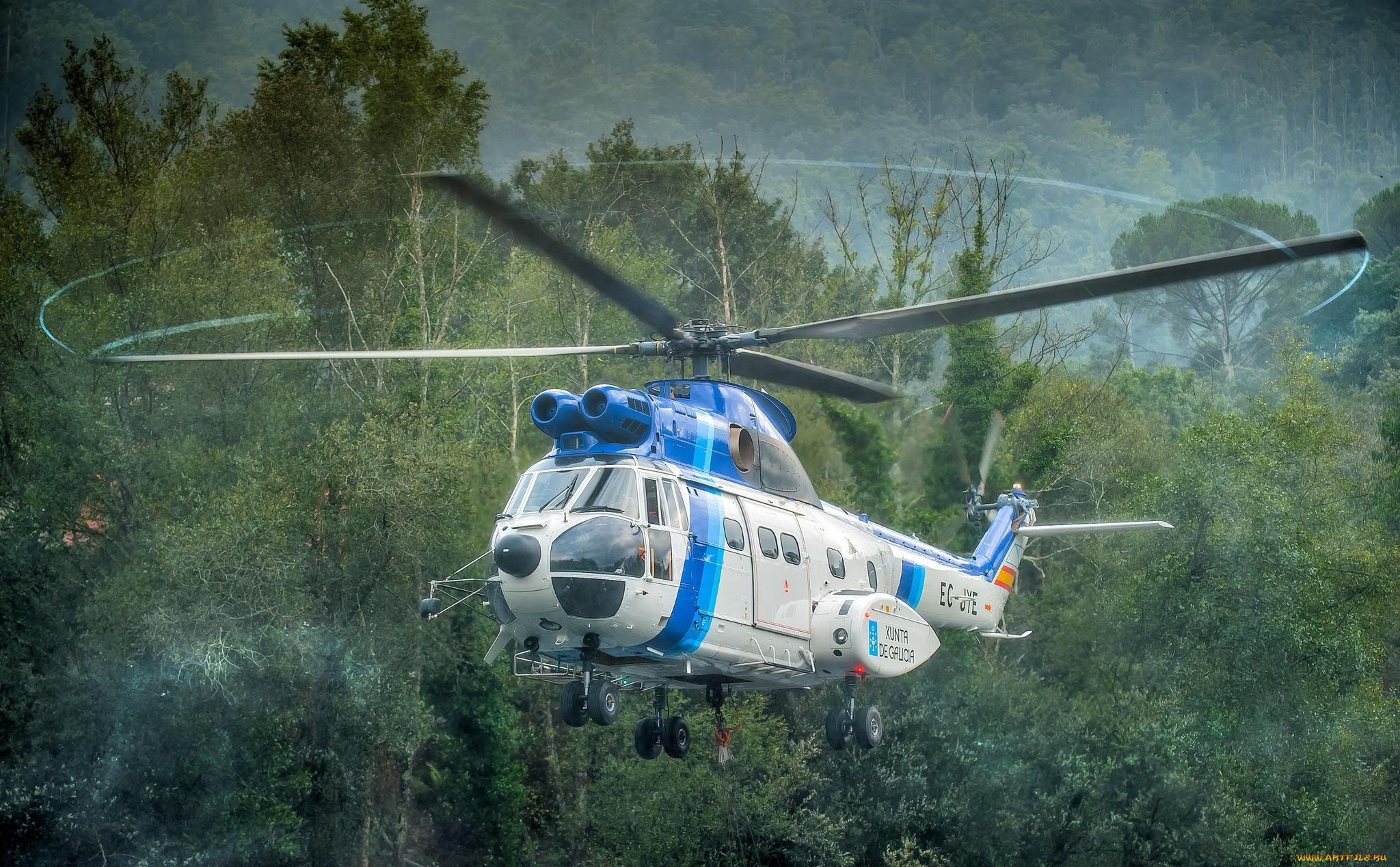 puma, авиация, вертолёты, вертушка